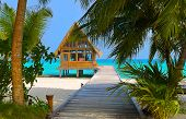 picture of kuramathi  - Diving club on a tropical island  - JPG