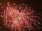 Firework Fuzz poster