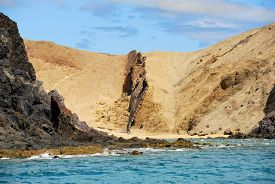 stock photo of papagayo  - The most famous Papagayo Beach on the Lanzarote Island in the Canary Islands Archipelago Spain. View from ocean