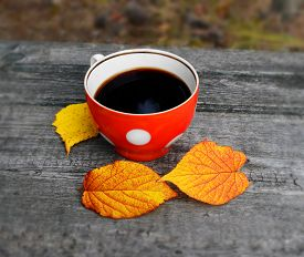 picture of reflections  - Black coffee in a red cup with white circles. It is on a rough wooden surface near three fallen leaves. A piece of blue sky reflected on the surface of the coffee. Leaves and texture of wood are poorly reflected on a cup wall. ** Note: Shallow depth of f - JPG