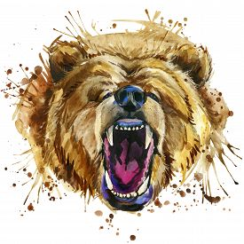 stock photo of grizzly bear  - growling grizzly bear T - JPG