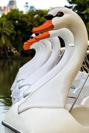 image of pedal  - Swan paddle or pedal boat floating in lake in public park - JPG