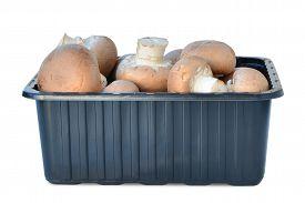 stock photo of crimini mushroom  - Brown cap cremini mushrooms in plastic box isolated on white background - JPG