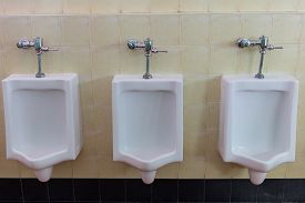 picture of urinate  - row white urinals in men - JPG
