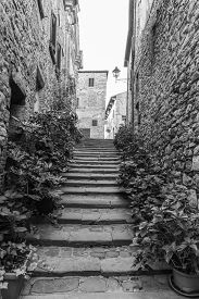 picture of prospectus  - The old town in Lucignano Arezzo Tuscany - JPG