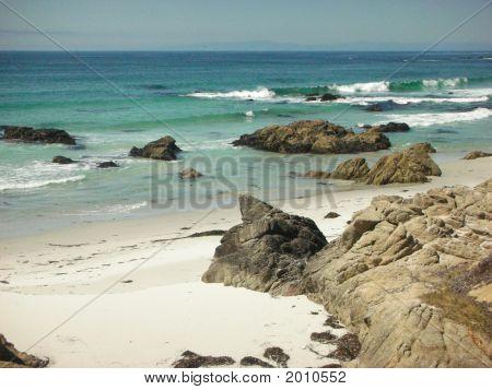 Montereycoast