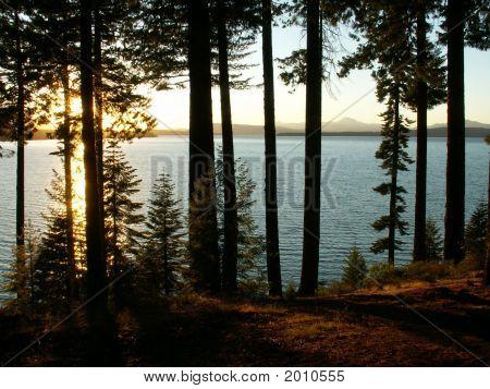 Sunset On Lake Almanor