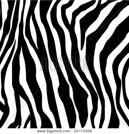 Zebra afdrukken