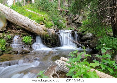 Creek at Elwood Pass in Pagosa Spring, Colorado