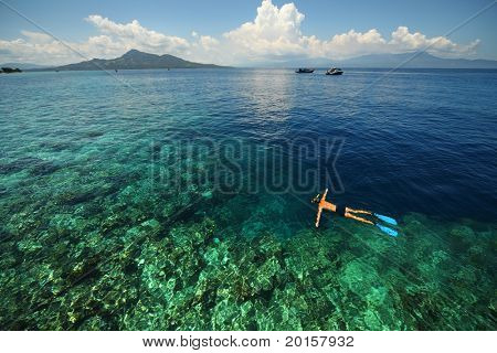 Young man snorkeling over coral reef in transparent tropical sea. Bunaken island. Indonesia