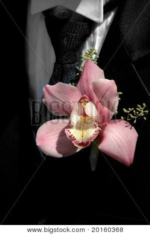 orchid on lapel with black tie