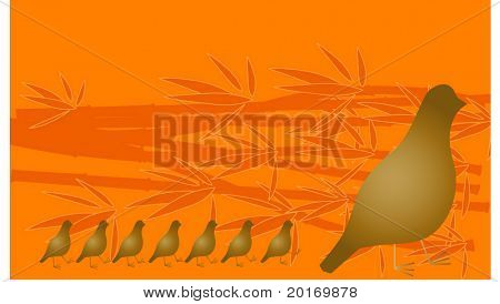 mother quail with babies vector