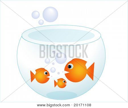 gold fishes in a fishbowl vector