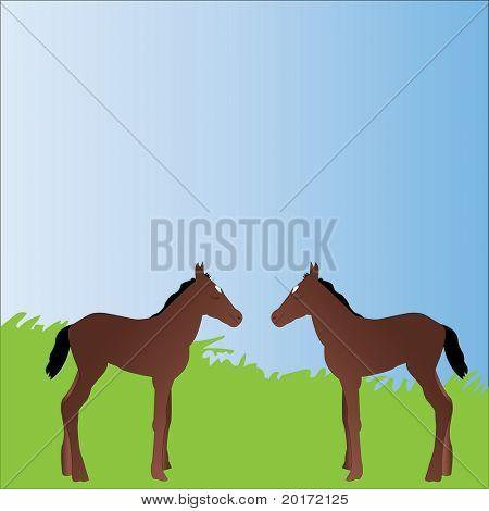 vector de ponis