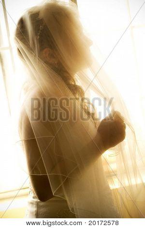 bride in veil  at window