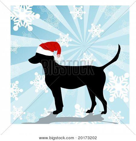 """Cão """"Santa baby"""""""