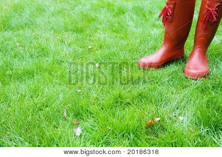 red boots standing in rain-wet grass