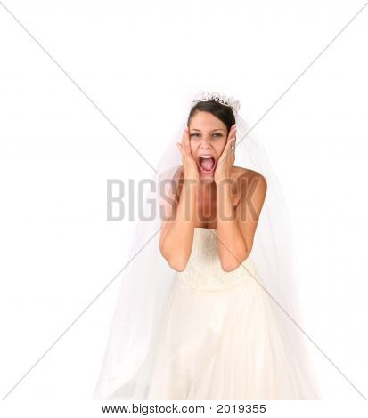 Crazy Bride: Bridezilla On The Loose