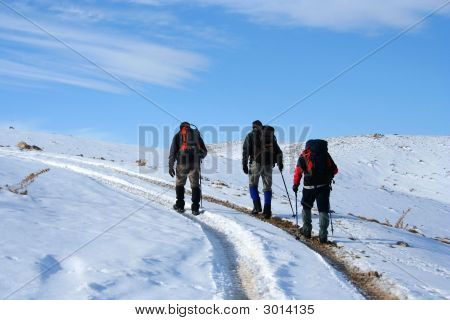 Trecking On Snowy Path On A Sunny Winter Day