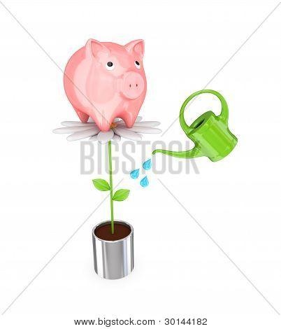 Piggy bank on a big flower and a bailer.
