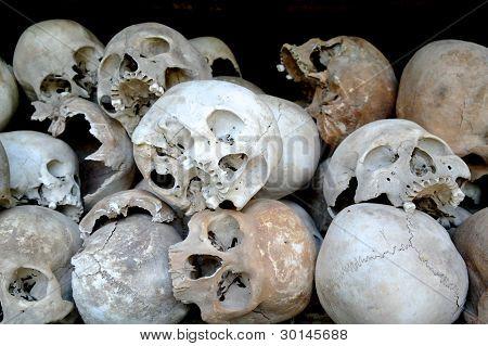 A Lot Of Skull