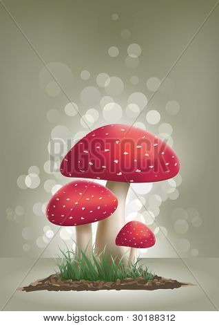 Fly Agaric Mushroom vector illustration.