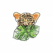 Wild Feline Tropical Hand Drawn Leopard Character poster