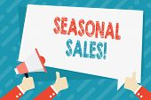 Text Sign Showing Seasonal Sales. Conceptual Photo Discount Which Is Offered On Goods At Particular  poster