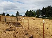 Animal Enclosure On Farm With Horses, Dirt, And Poop poster
