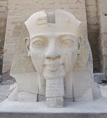 pic of ramses  - Statue of head of Ramses II at Luxor temple in Egypt - JPG