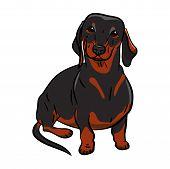 Black Dachshund Dog. Hand-drawn Dog. Realistically Painted Dachshund Sign Calendar, Friday 13 With A poster