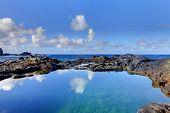 Olivine Pools rocks and ocean.  West Maui, Hawaii poster