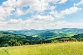 Beautiful Summer Countryside In Mountains. Wonderful Sunny Day Scenery. Grassy Rural Fields And Mead poster