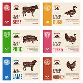 Vector Meat And Poultry Labels poster