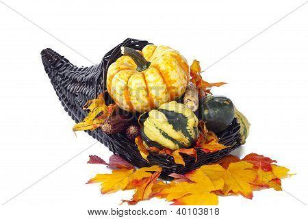 Fall Centerpeice