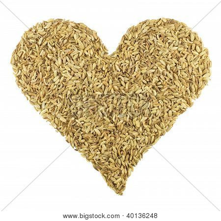 Love Fennel Seeds