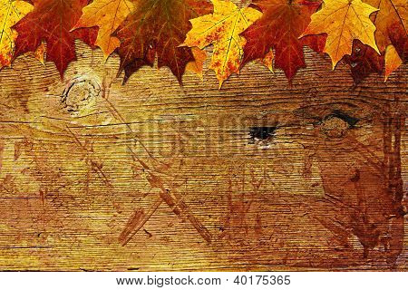 Wood background with maple leaves