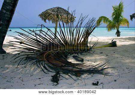 Republica Dominicana  Beach