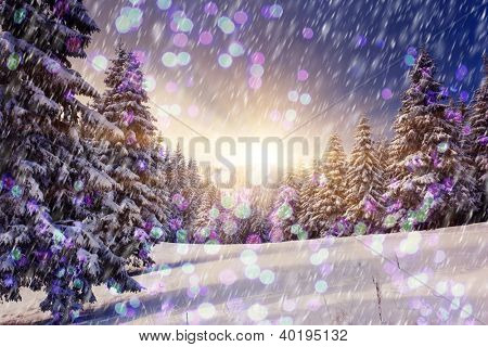 A frosty and sunny day is in mountains. Christmas abstract bokeh