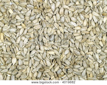 Hulled Sunflower Seeds