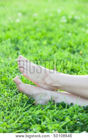 Barefooted Attractive Female Feet Laying In Green Grass