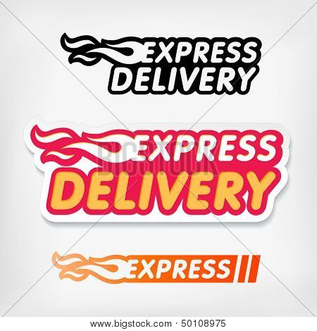 Express delivery symbols. Vector. Express delivery stickers set.
