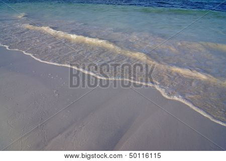 Fragment Of The Sandy Seashore