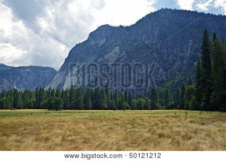 Yosemite N.p. Valley