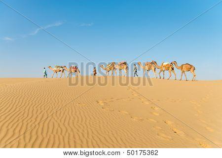 Caravan In Sand Desert Dunes