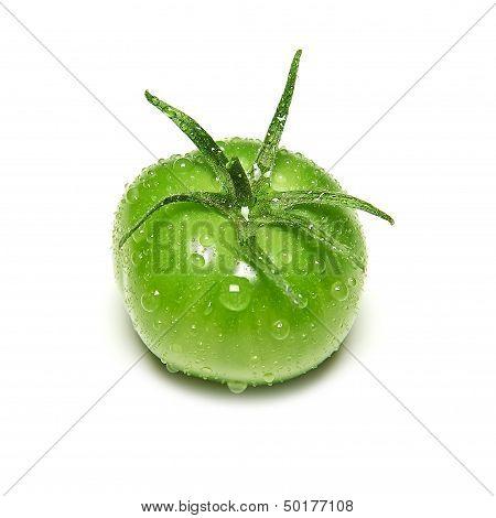 Immature green tomato