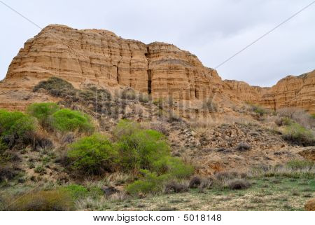 Charyn Canyon In Spring