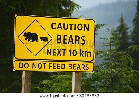 Caution Bears Sign