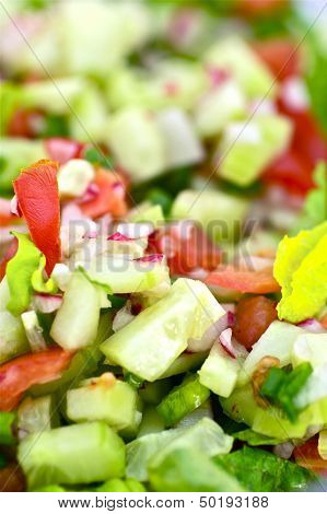 Vegetable Diet Salad