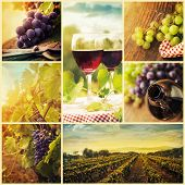 stock photo of grape  - Country series - JPG